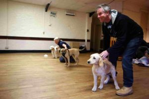 man holding dog during puppy training classes