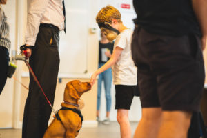 Puppy school classes boy in mask looking at puppy